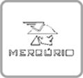 TRANSPORTADORA CORREIAS MERCÚRIO